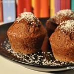 muffins cocco e cioccolato